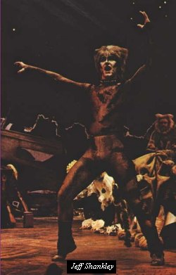 Jeff Shankley as Munkustrap in the London production of Cats