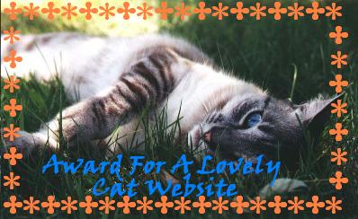 Lovely Cat Page Award