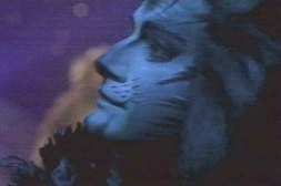 Michael Gruber as Munkustrap from the Cats video